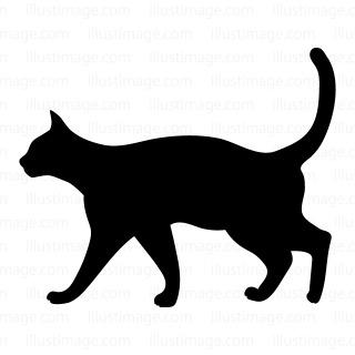 猫のイメージ図