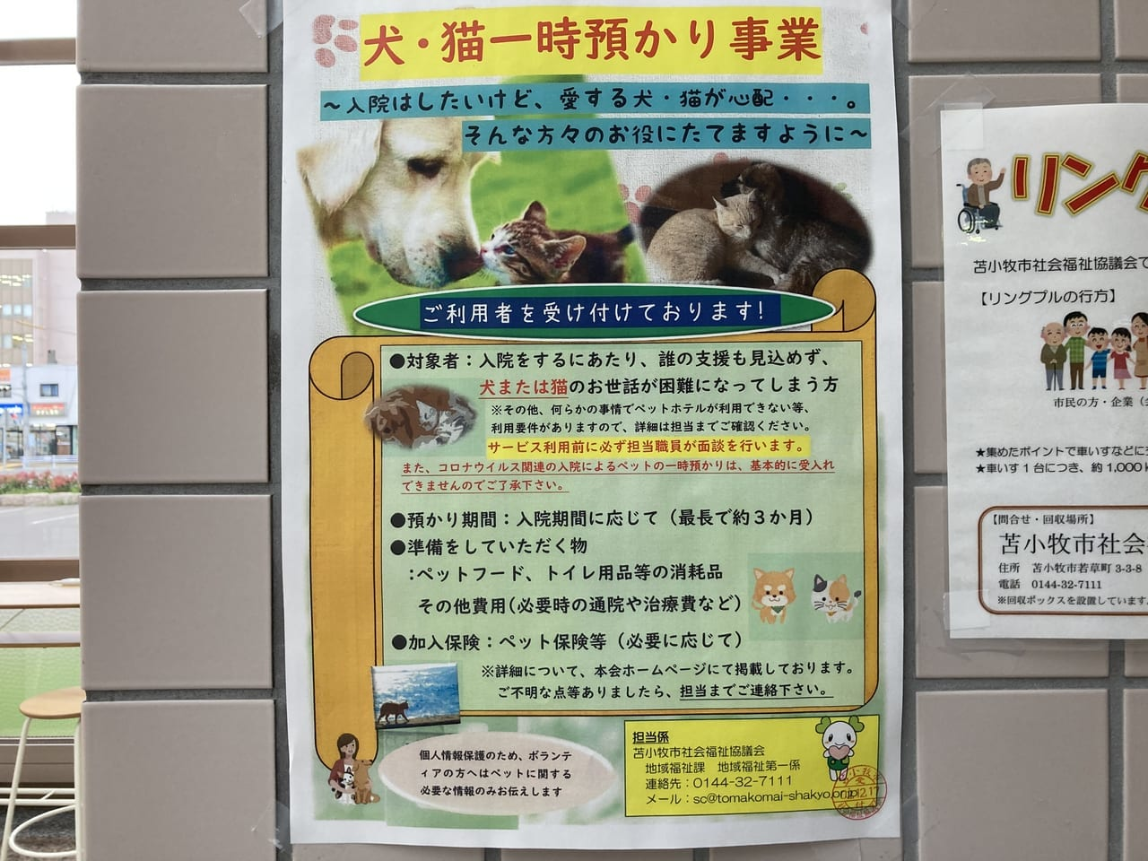 犬猫一時預かり事業ポスター